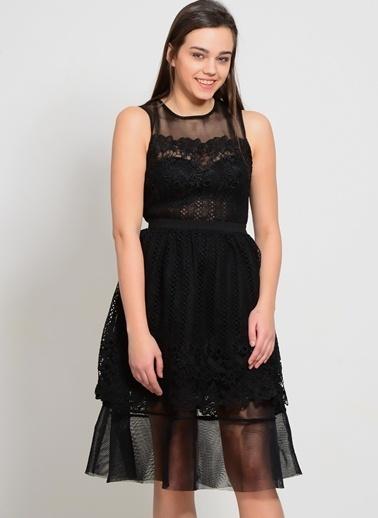 Endless Rose Elbise Siyah